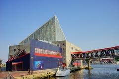 巴尔的摩内在港口水族馆 免版税库存图片