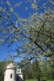 维尔纽斯大学老观测所大厦  免版税库存图片