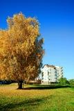 维尔纽斯市秋天时间的Pasilaiciai区 库存图片