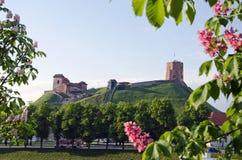 维尔纽斯标志- Gediminas历史城堡和塔在春天,立陶宛 免版税图库摄影
