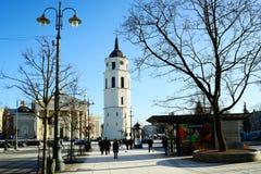 维尔纽斯立陶宛大教堂地方的市首都 库存图片