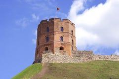 维尔纽斯,立陶宛。维尔纽斯市视图。维尔纽斯 免版税库存照片