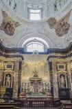 维尔纽斯,立陶宛,欧洲,大教堂 免版税库存照片