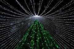 维尔纽斯,立陶宛12月1日:圣诞树夜视图在2016年12月1日的维尔纽斯在维尔纽斯,立陶宛 1994年维尔纽斯老镇是i 免版税图库摄影