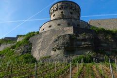维尔茨堡,德国- 2015年5月11日:Marienberg堡垒或Festung的看法在秋天与葡萄园前面的 库存照片