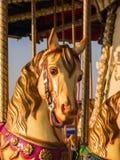 黑尔讷海湾码头,转盘马在晚上阳光下 图库摄影