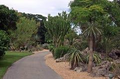 费尔柴尔德热带植物园& x28; 科勒尔盖布尔斯, FL& x29; 图库摄影