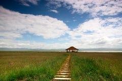 尕海湖 免版税库存图片