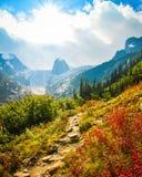 尖顶在妖怪省公园,不列颠哥伦比亚省,加拿大 免版税库存照片