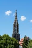 尖顶顶面乌尔姆MÃ ¼ nster大教堂德国欧洲 库存图片