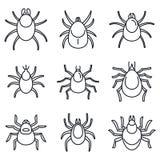 尘土小蜘蛛象集合,概述样式 库存例证