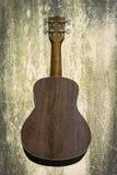 尤克里里琴在白色背景的夏威夷吉他 库存照片