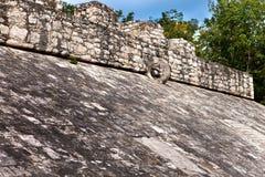尤加坦, Mexico.A玛雅球场, 免版税库存照片