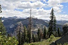 尤塞米提谷云彩、山和树 库存图片