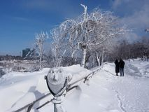 尼亚加拉公园在冬天 免版税库存图片