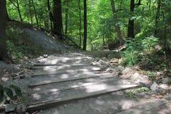 尼亚加拉峡谷足迹步行 库存照片