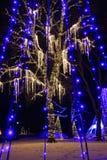 尼亚加拉瀑布光节日树 库存照片