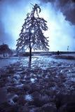 尼亚加拉瀑布冬天 库存图片