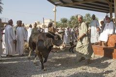 尼兹瓦山羊和牲畜市场 库存图片