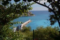 尼斯口岸的美丽的景色  免版税库存图片