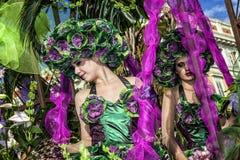 尼斯著名狂欢节,花`争斗 这是里维埃拉的主要冬天活动 免版税图库摄影