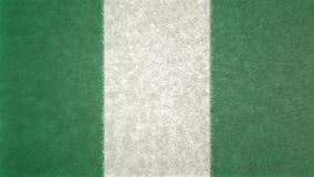 尼日利亚的旗子的原始的3D图象 库存例证