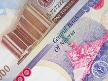 尼日利亚货币奈拉中央钞票,尼日利亚金钱 免版税图库摄影