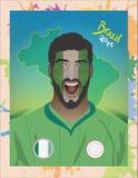 尼日利亚足球迷 免版税库存照片