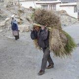 尼泊尔坚硬生活 免版税库存图片