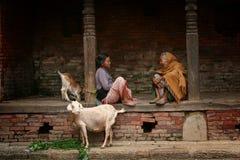 尼泊尔妇女谈话 库存图片