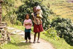 尼泊尔山孩子 库存图片