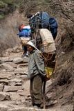 尼泊尔搬运程序 免版税库存图片