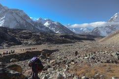 尼泊尔搬运程序 库存图片