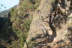 尼泊尔的迁徙的足迹 图库摄影