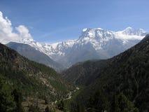 尼泊尔谷 库存图片