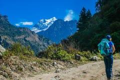 尼泊尔-敬佩马纳斯卢峰的迁徙的女孩 库存照片