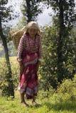 尼泊尔-年长妇女在Kathmandu Valley 免版税库存图片