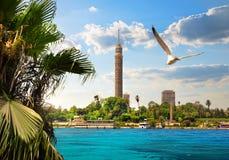 尼罗在开罗 免版税库存图片