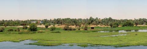 尼罗河沿 库存照片
