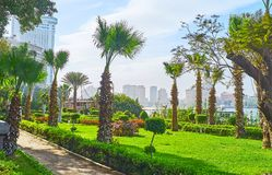 尼罗河的,开罗,埃及棕榈庭院 免版税库存图片