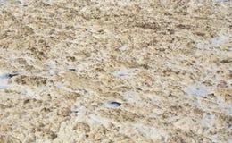 尼罗河表面上的白色泡沫  免版税库存图片