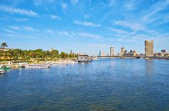尼罗河,开罗,埃及绿色银行  免版税图库摄影