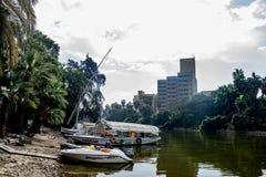 尼罗河Riverscape在开罗,埃及 免版税库存照片