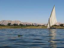 尼罗,埃及 库存照片
