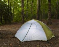 尼龙帐篷在森林里 库存照片