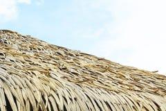 尼巴椰子留下屋顶 图库摄影