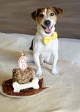 尾随与蛋糕坐他的第六个生日 免版税库存图片