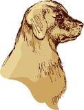 尾随坚硬的猎犬手拉的例证-在vintag的剪影 免版税库存照片