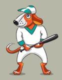 尾随棒球运动员 免版税图库摄影