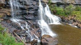 黑尿病迪维斯在西方柔滑的平稳的virgina弗吉尼亚的水附近的秋天图标 免版税库存照片